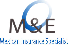 Mexican Health Insurance logo